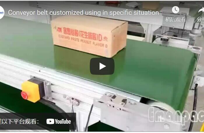 Conveyor belt customized using in specific situation